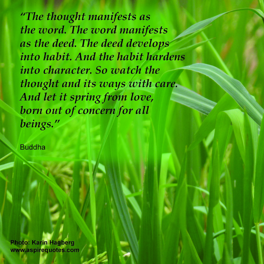 Splendid quote #1