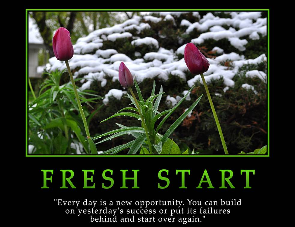 Start quote #5
