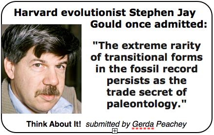Stephen Jay Gould's quote #6