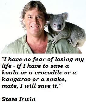 Steve Irwin's quote #7