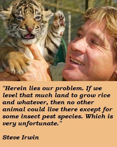 Steve Irwin's quote #6