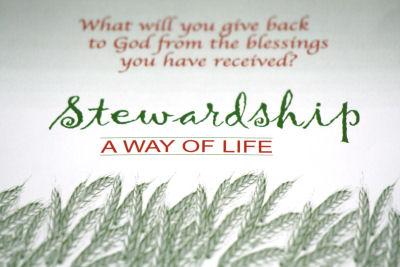 Stewardship quote #1