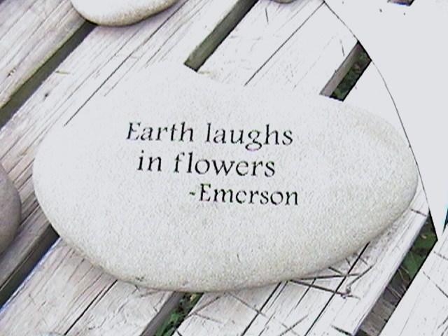 Stones quote #6