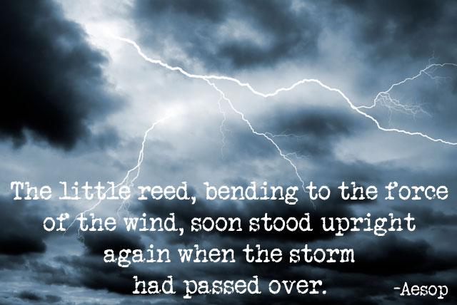 Storm quote #7
