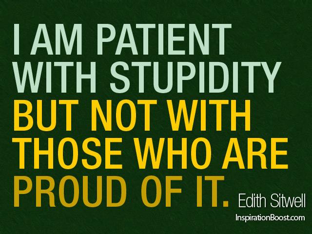 Stupidity quote #5