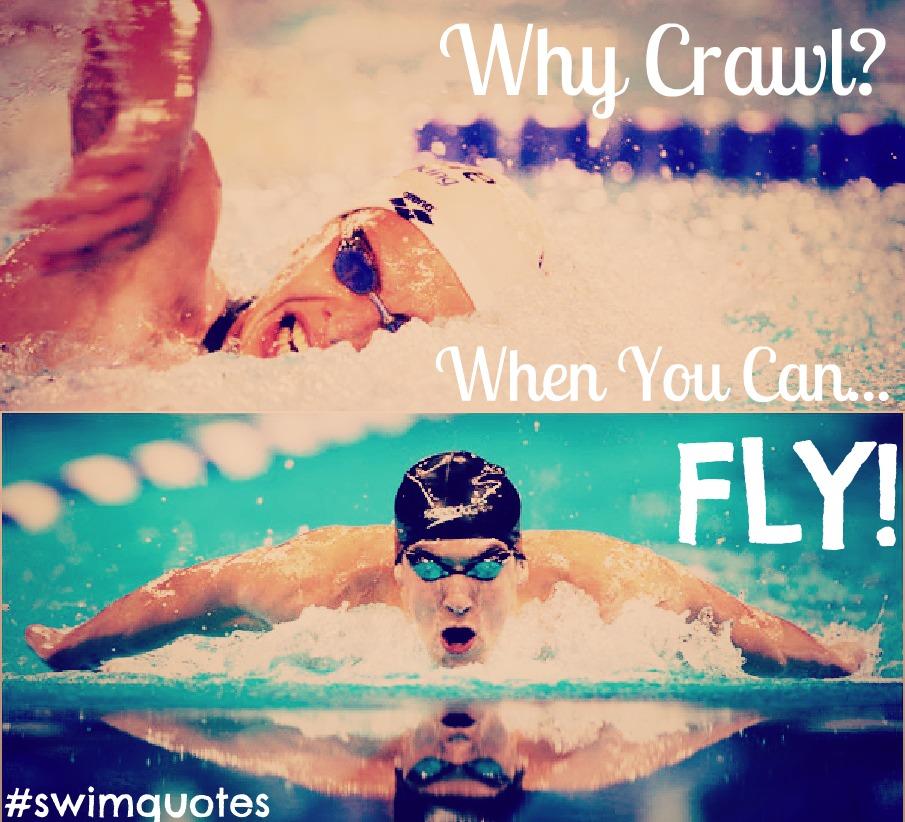 Swim quote #3