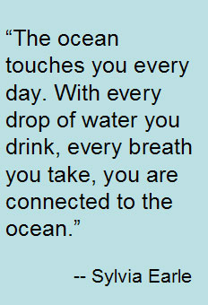 Sylvia Earle's quote #4