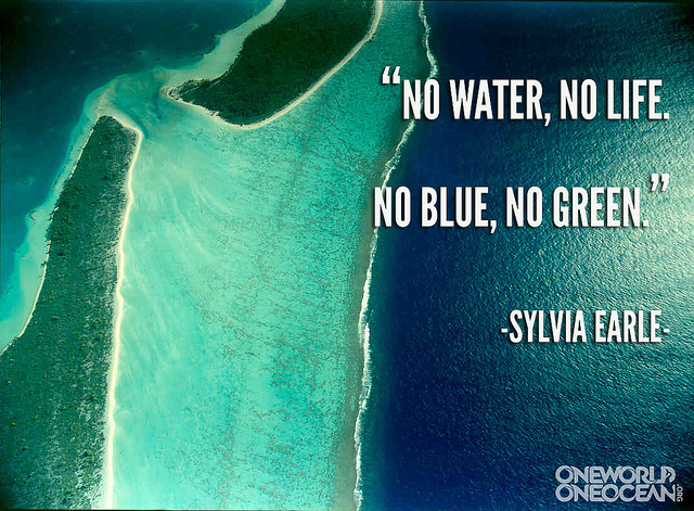 Sylvia Earle's quote #7