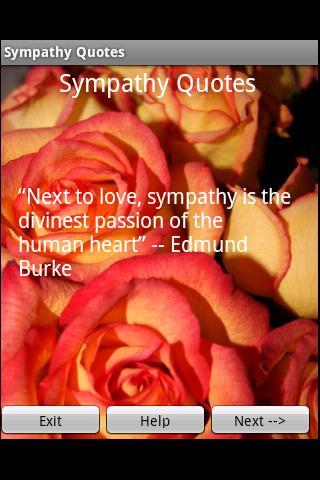 Sympathy quote #5
