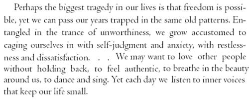 Tara Brach's quote #4