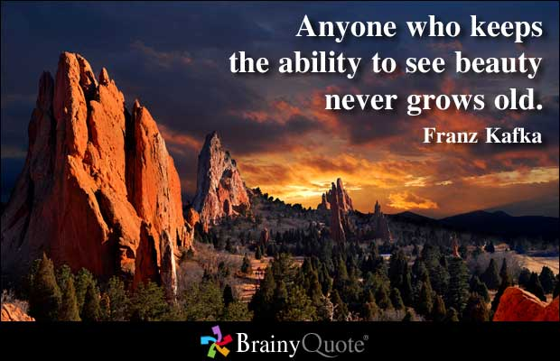 Technical Ability quote #2