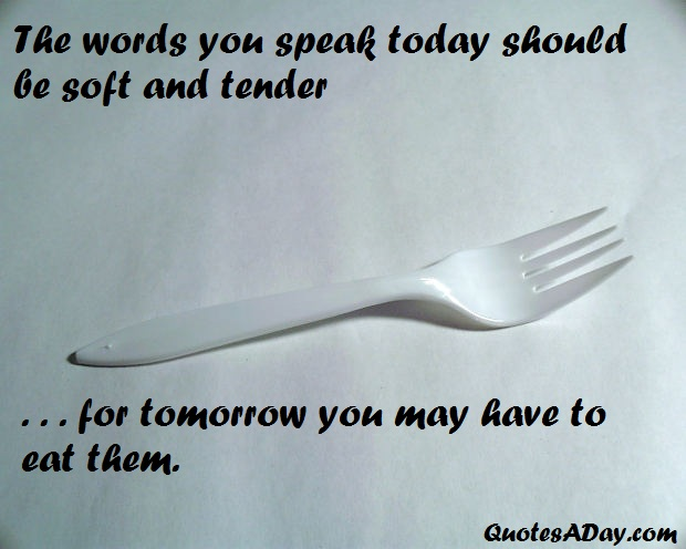Tender quote #4