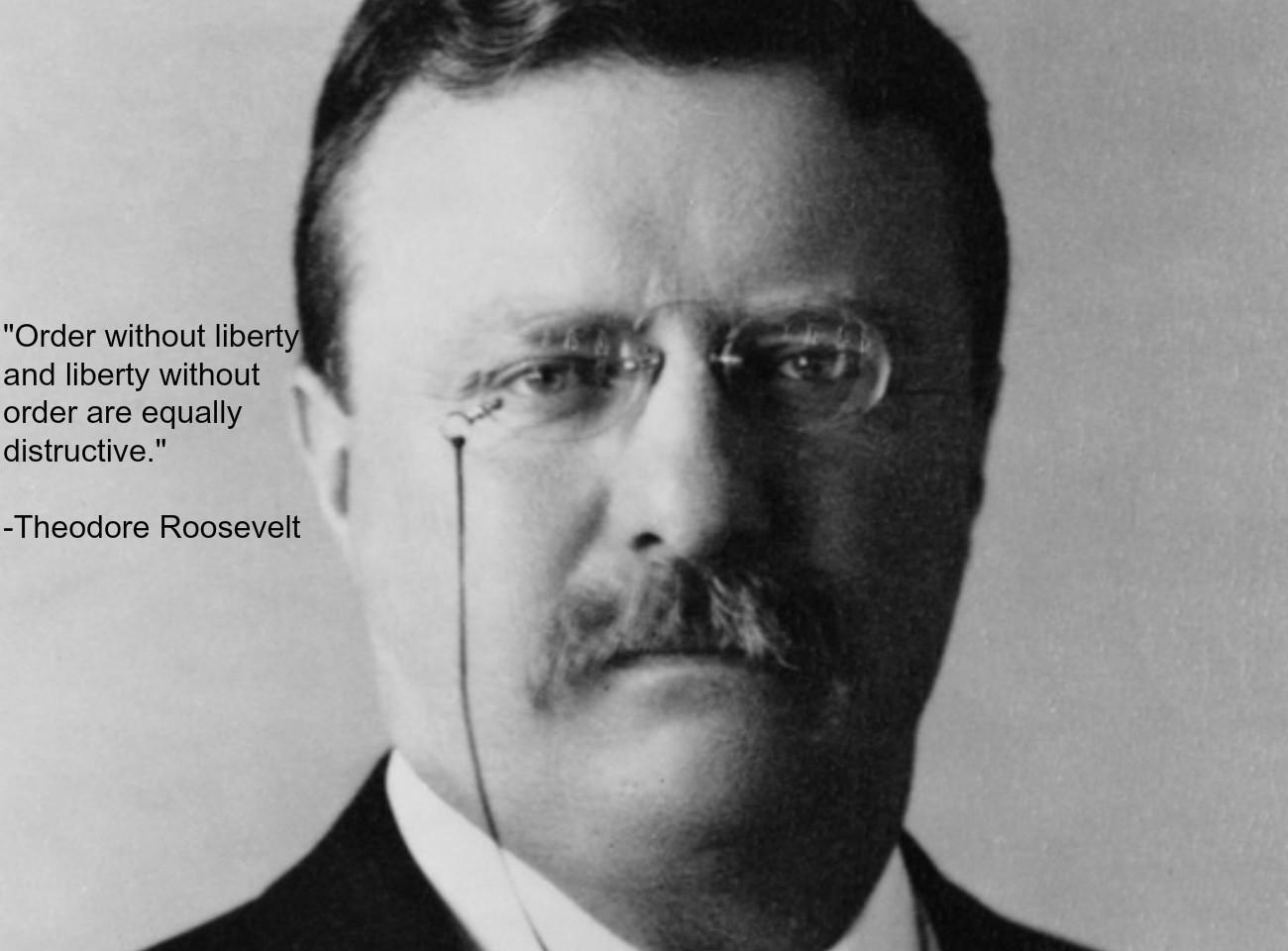 Theodore Roosevelt's quote #6