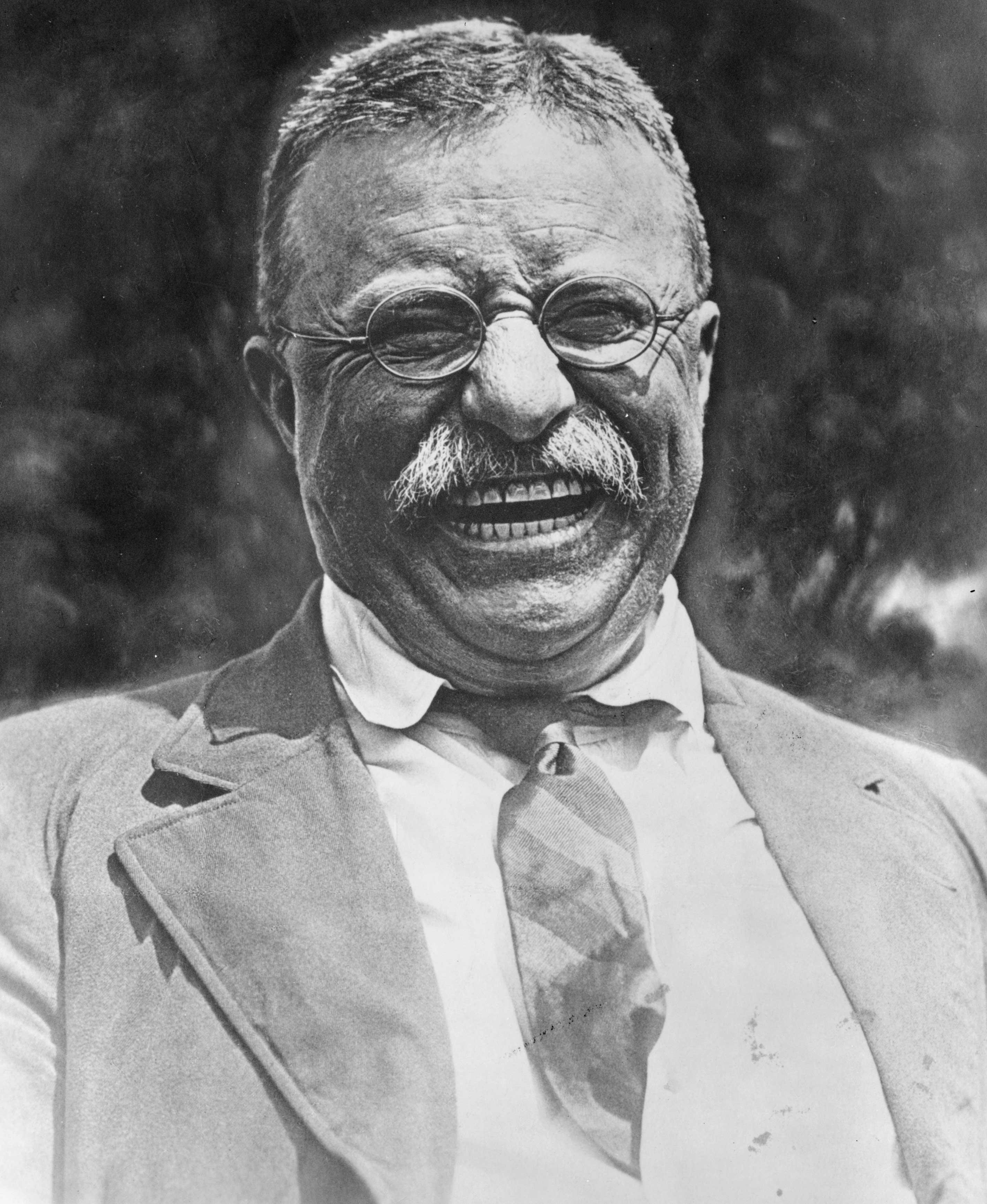 Theodore Roosevelt's quote #1