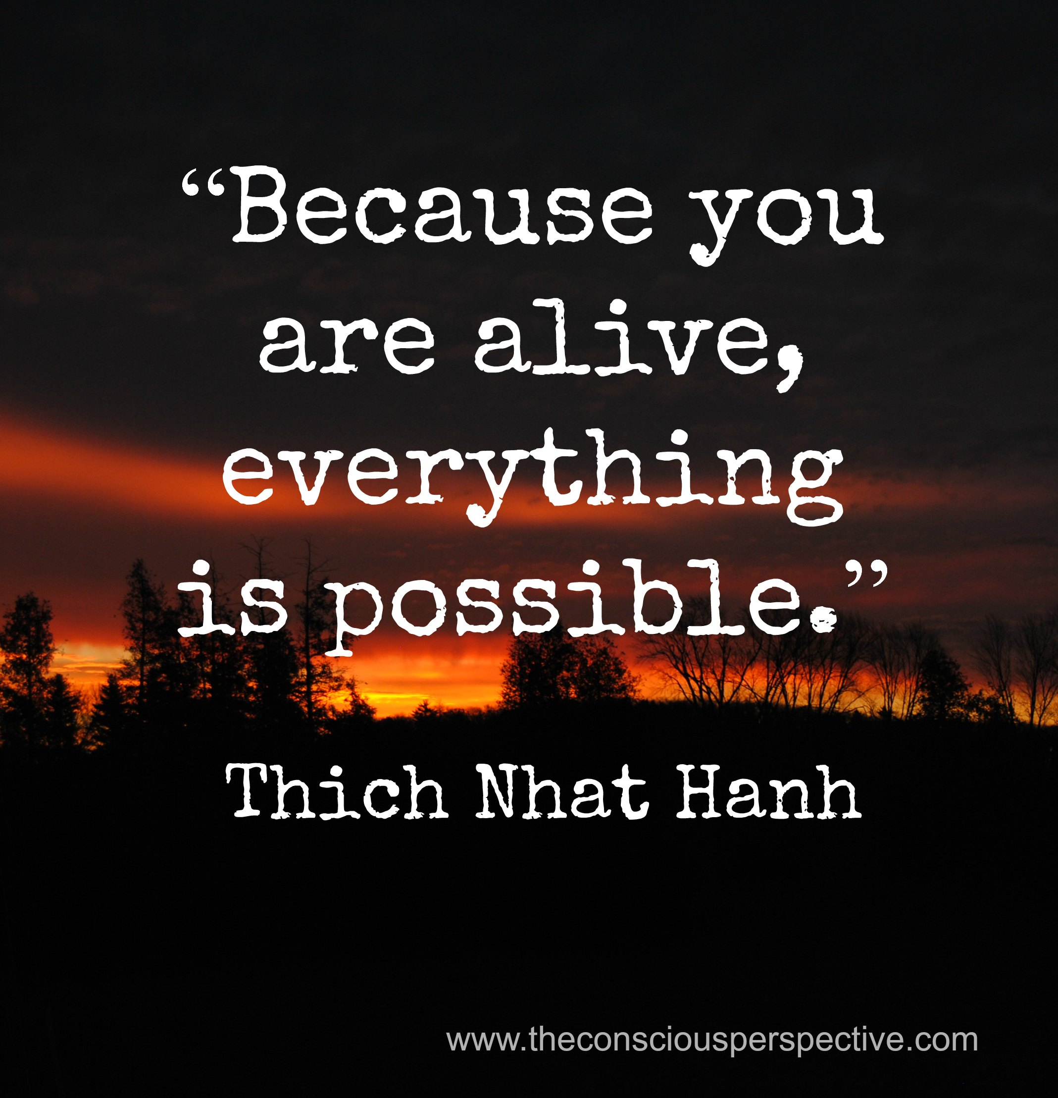 Thich Nhat Hanh's quote #8