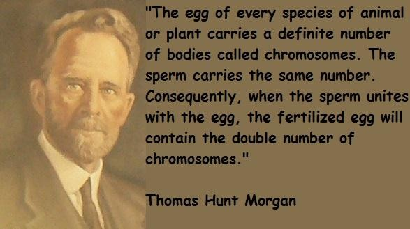 Thomas Hunt Morgan's quote #1