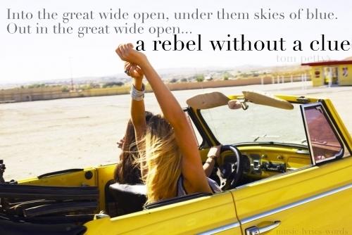 Tom Petty's quote #4