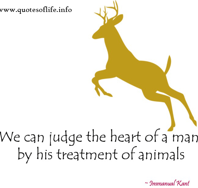 Treatment quote #4