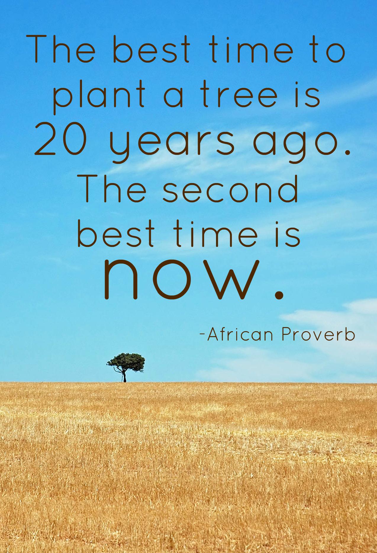 Tree quote #3