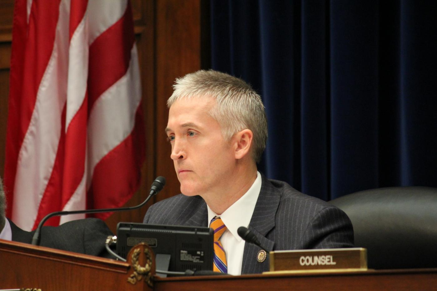 Trey Gowdy's quote #4