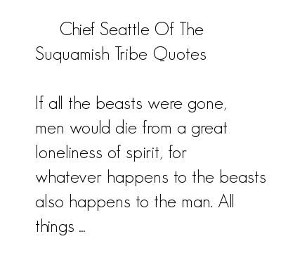 Tribe quote #2
