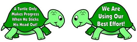 Turtle quote #1