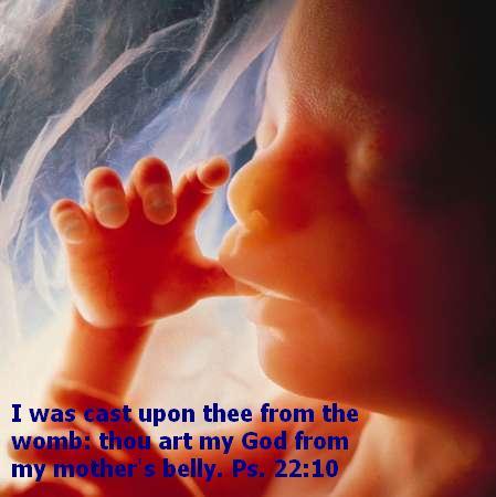 Unborn Children quote #2