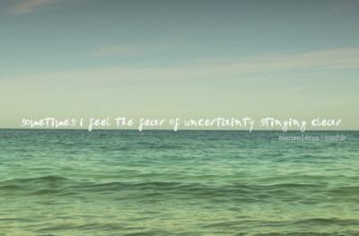 Uncertainty quote #2