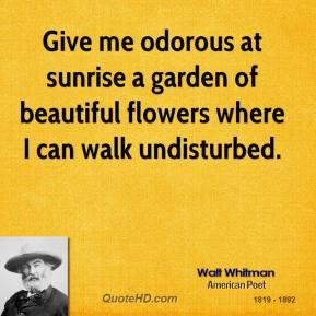 Undisturbed quote #1