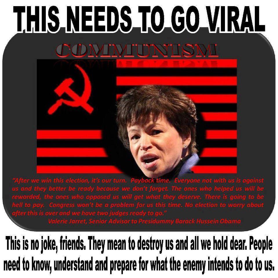 Valerie Jarrett's quote #4