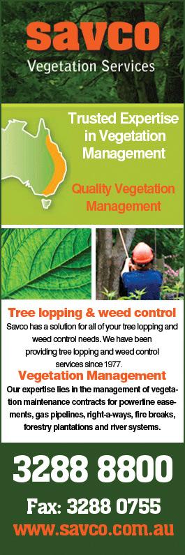 Vegetation quote #1