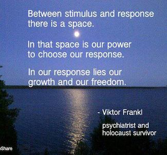 Viktor E. Frankl's quote #5