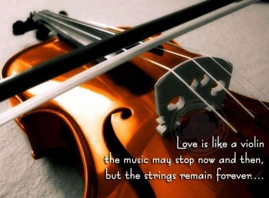 Violin quote #5