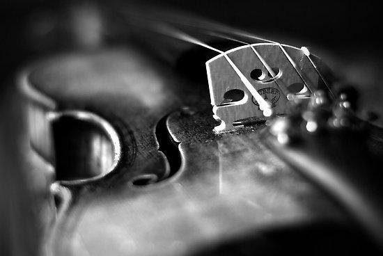 Violin quote #2
