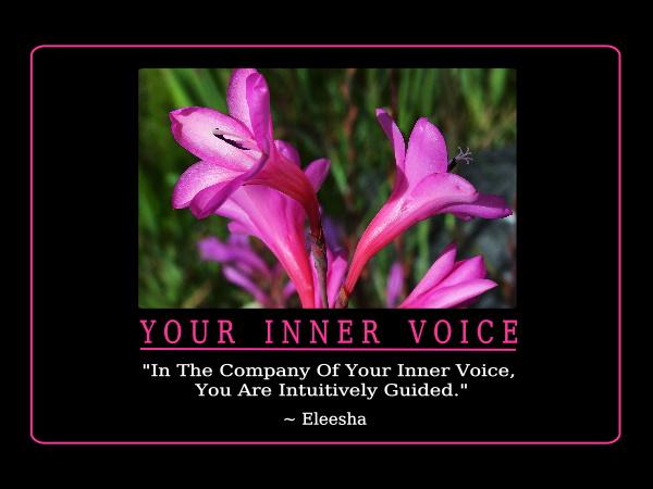 Voice quote #6