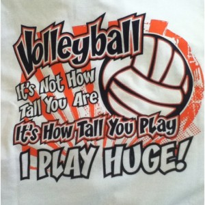 Volley quote #2