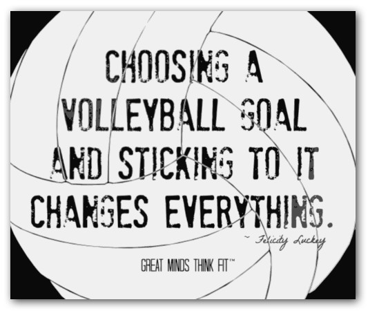 Volley quote #1