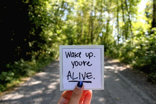 Wake quote #7
