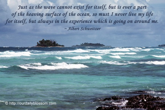 Wave quote #3