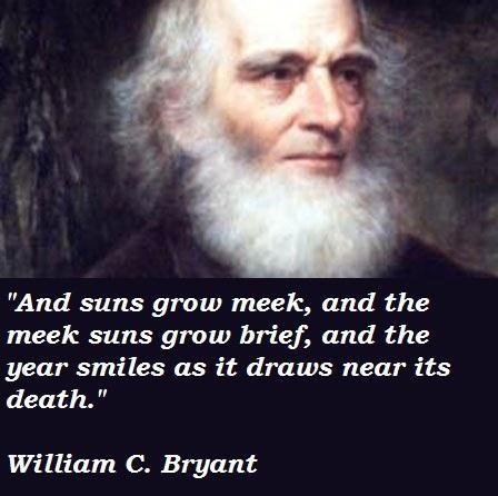 William C. Bryant's quote #1