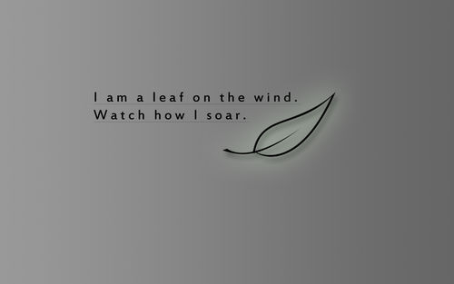 Wind quote #4