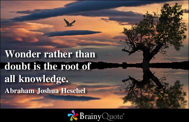 Wonder quote #4