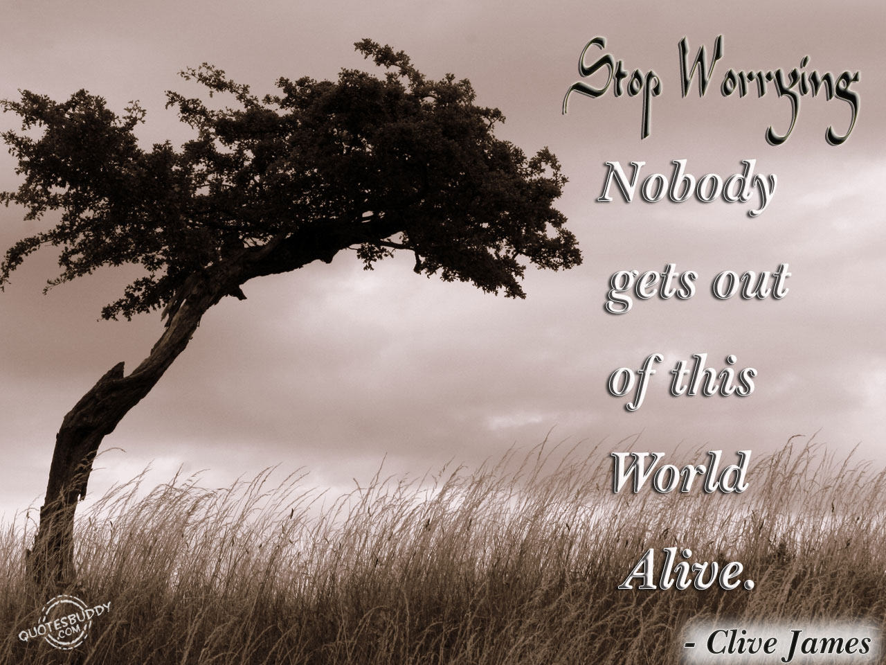 Worried quote #7