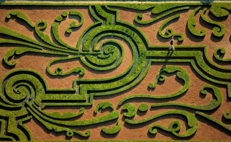 Yann Arthus-Bertrand's quote #7