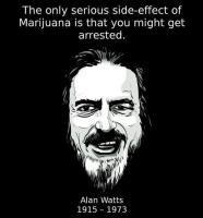 Alan Wilson's quote