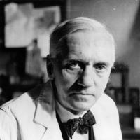 Alexander Fleming's quote