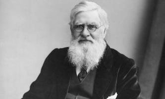 Alfred Russel Wallace profile photo