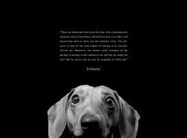 Animal Life quote #2