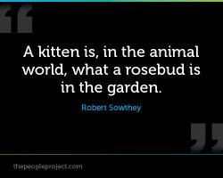 Animal World quote #2