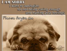Apology quote #6